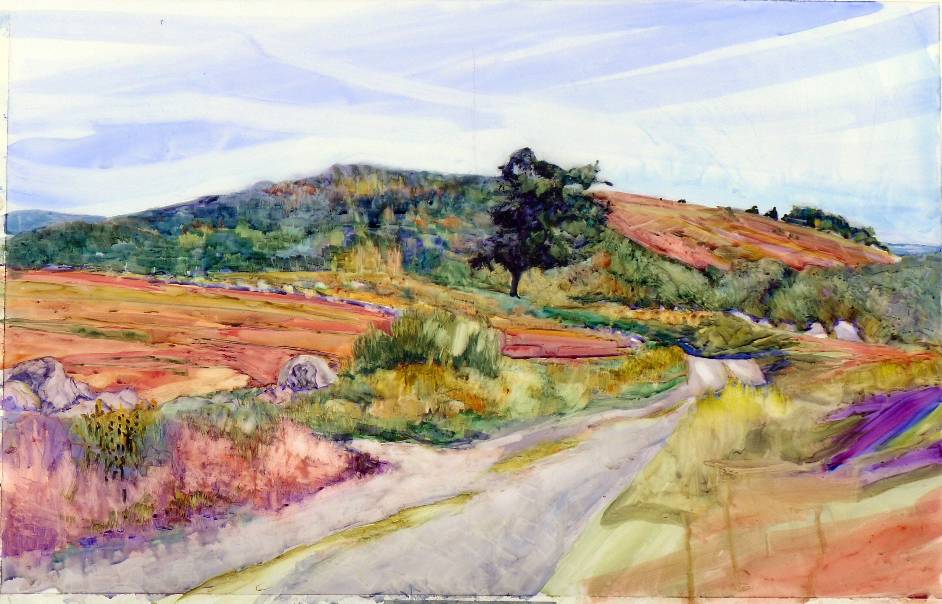 """Clary Hill Blueberry Barrens,"" watercolor full sheet, available."