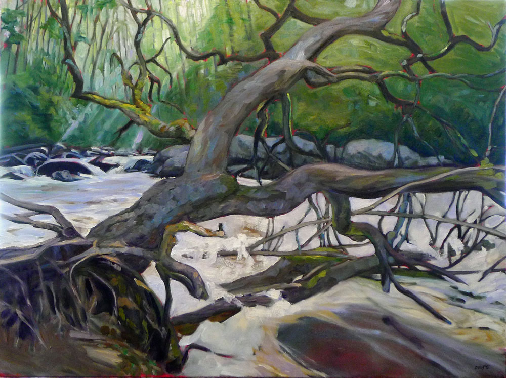 """Deadwood,"" 30X40, oil on canvas, available."
