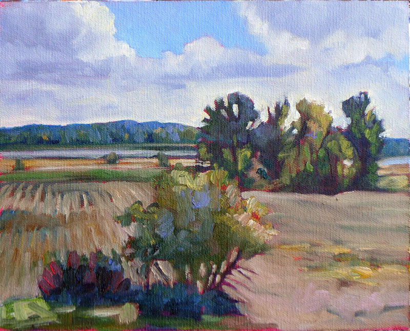 """Marshes along the Ottawa River,"" Plaisance, Quebec"